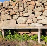 Kamienny mur na bałtyckim wybrzeżu