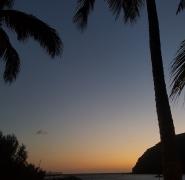 9-wyspy-kanarysjkie-palmy