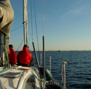 żeglowanie po morzu bałtyckim w wietrzny dzień