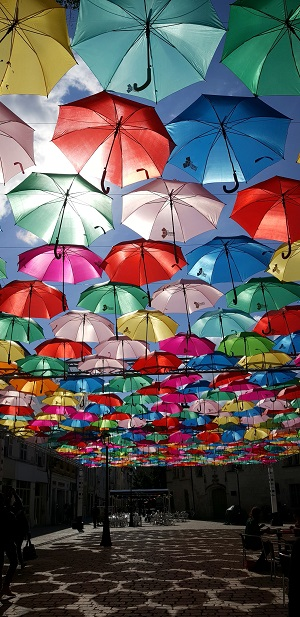 parasole na festiwalu