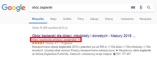 prezentacja szkoły w google