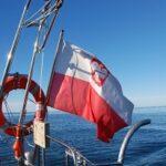 Polska bandera – czym różni się od flagi?