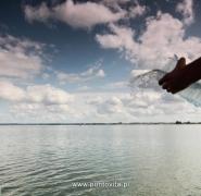 Mazurskie jezioro 2013